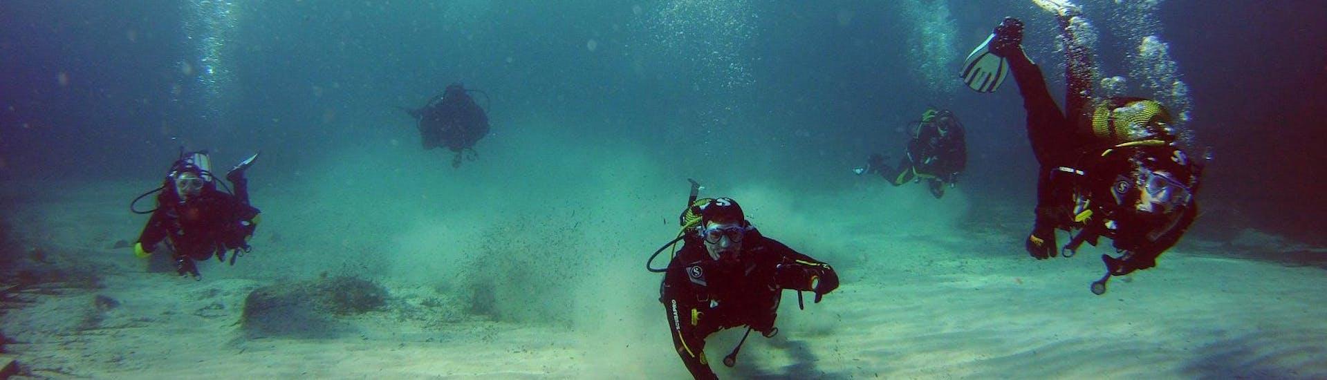 Curso de Buceo para Principiantes - PADI Scuba Diver