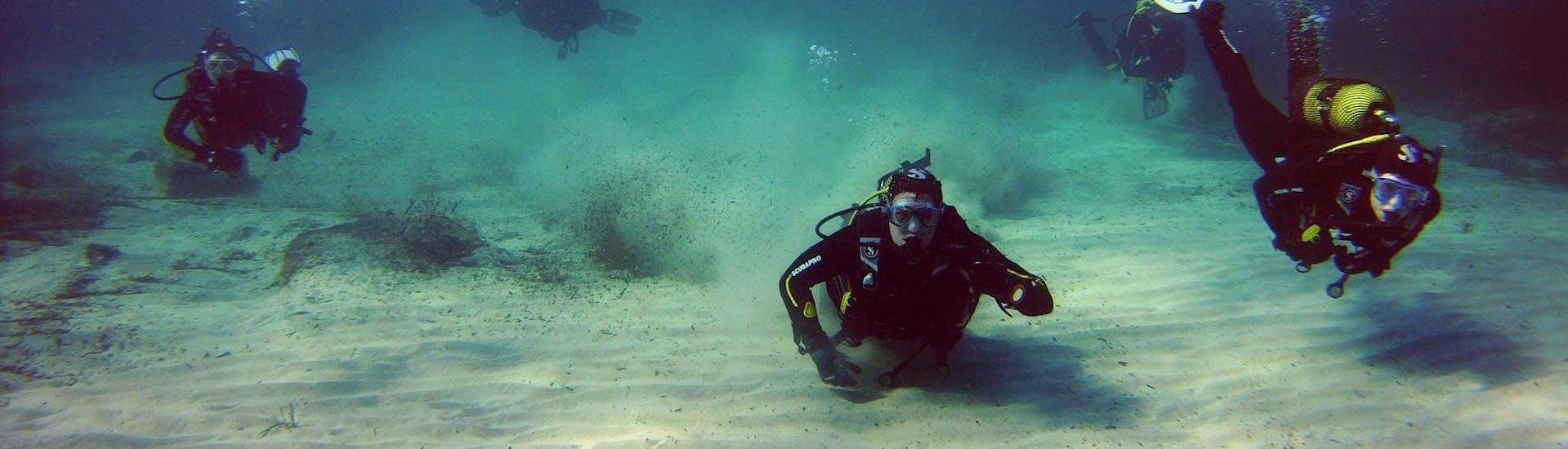 Curso de Buceo para Principiantes - PADI Open Water Diver