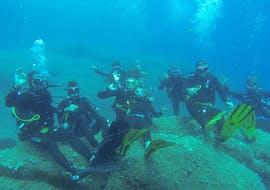 Tauchkurs in Poltu Quatu für Anfänger mit Orso Diving Club Poltu Quatu