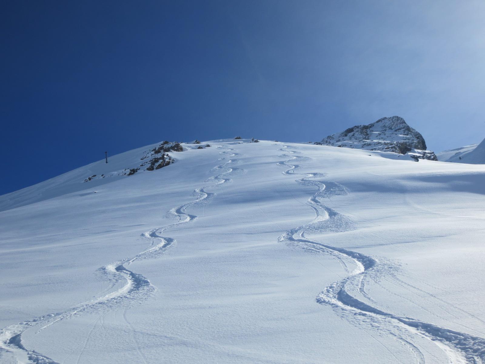 Privélessen skiën voor volwassenen (verschillende sneeuw)