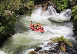 During the Kaituna River Rafting near Rotorua a group of rafters are paddling through the thundering waters of Tutea Falls together with their guide from Rafting Adventures Rotorua.