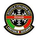 Logo Ski School Top Ski Piculin