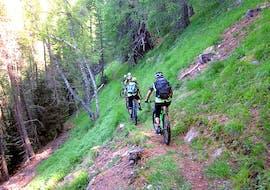 Mountain Bike Downhill in Val di Sole - Intermedio