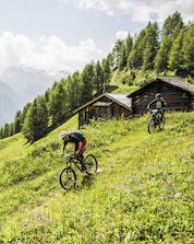 Two people are pedalling along an alpine mountain pasture while mountain biking in the Ötztal Valley.