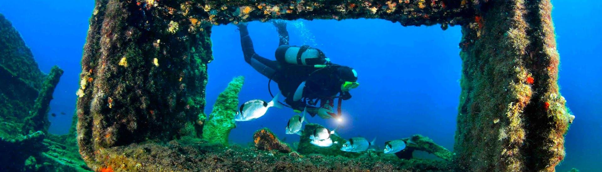 Private Scuba Diving Course - PADI Advanced Open Water Diver