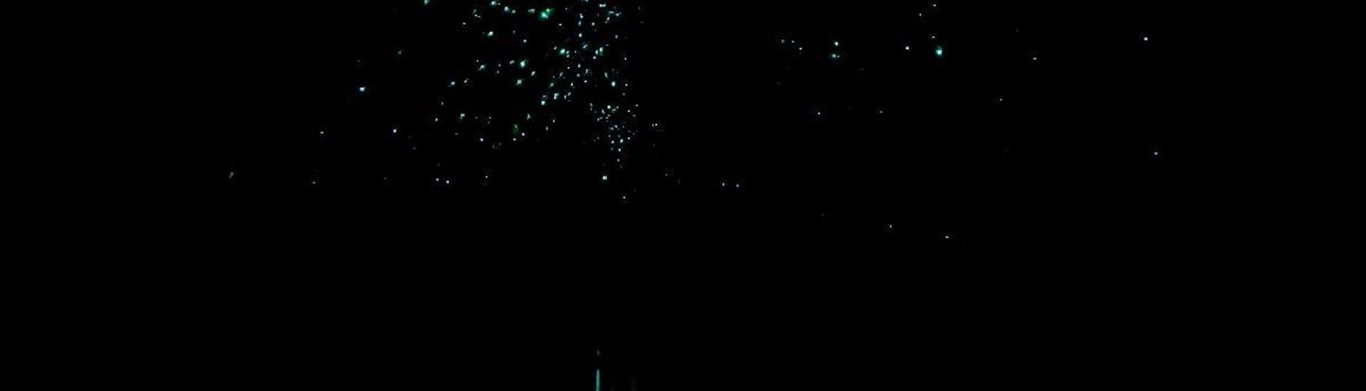 Kayak Rotorua - Twilight Glow Worm Tour Summer