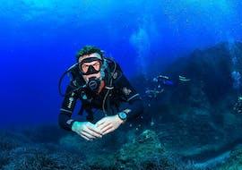 PADI Scuba Diver Course in St. Julian's