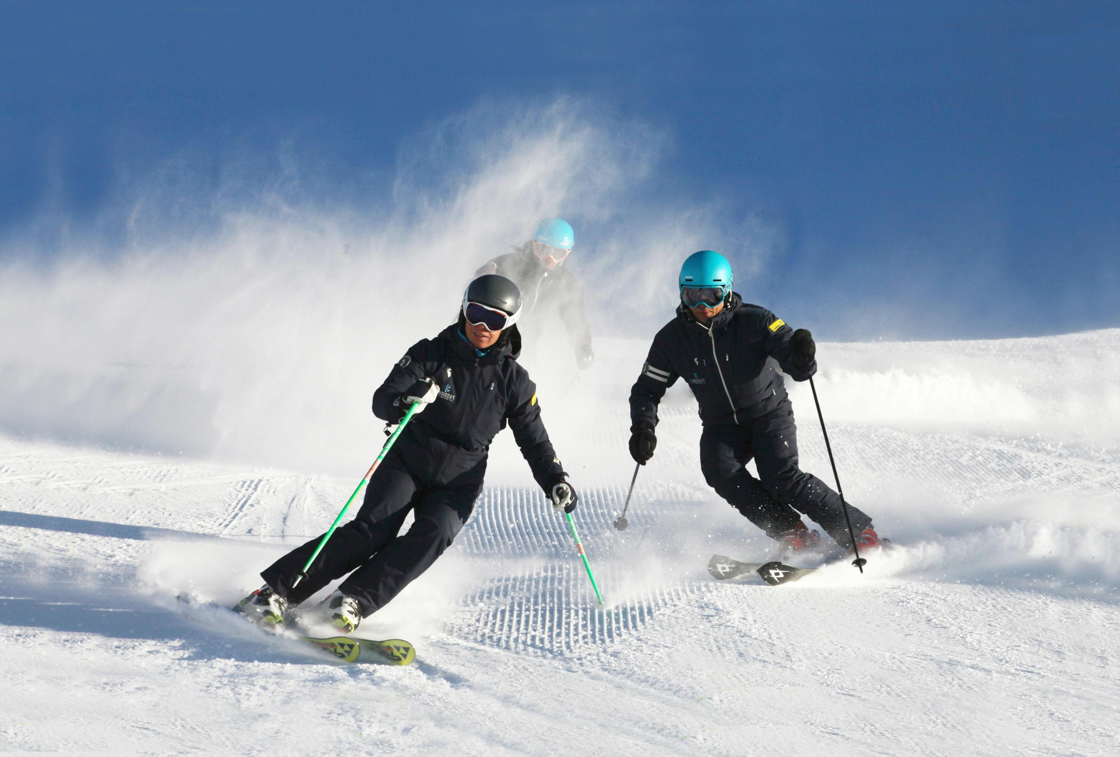 Cours particulier de ski Adultes pour Tous niveaux - Journée