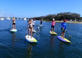 Our paddlers working hard on the Nerang River during the Stand up Paddle Boarding Hire in Gold Coast