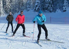 Skiers are skiing in front of a forest of snow-covered trees during their Private Cross Country Skiing Lessons - Low Season with the ski school ESI Font Romeu.