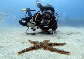 Discover Scuba Diving for Beginners - Lanzarote