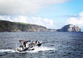 "Boat Tour from Horta - ""Capelinhos Ocean Tours"""