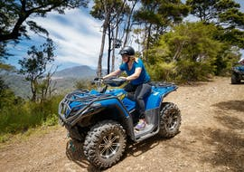 Quad Biking in Nelson - Farm Forest Ride