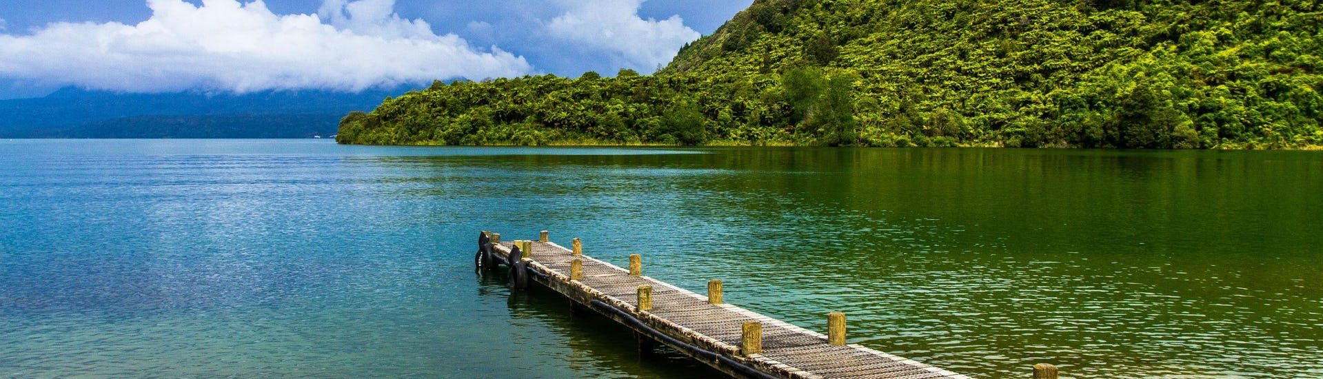 An image of a jetty leading into the clear waters of Lake Tarawera in the Rotorua region, a popular hotspot for kayaking in New Zealand.