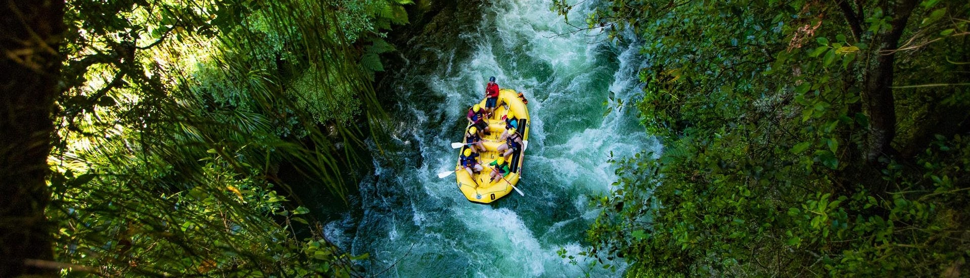 A raft is floating through the beautiful green landscape of an ancient native forest during Rafting on Kaituna River in Okere Falls with Rotorua Rafting.