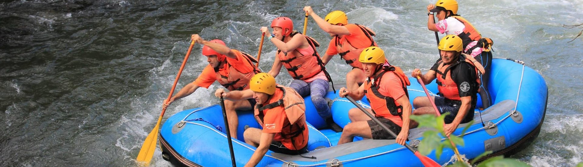 During Rangitaiki River Rafting in Murupara with Rafting Adventure Rotorua, the participants are paddling together in order to overcome any obstacles on the river.