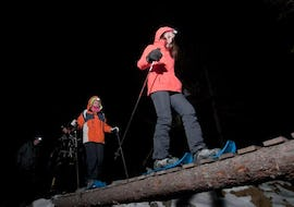 Snowshoeing Private - Nocturnal