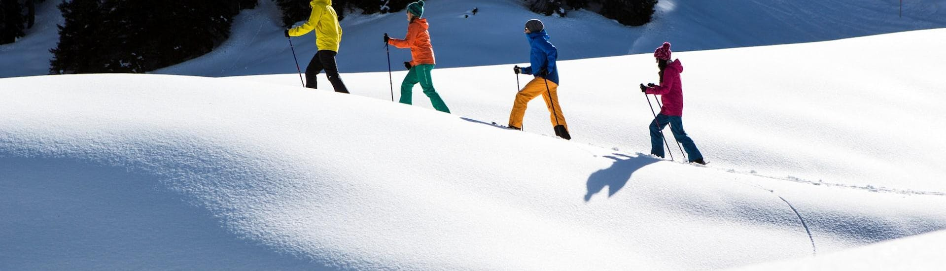 Snowshoeing Private - Silvretta Montafon - All Levels with Skischule Gaschurn-Partenen - Hero image