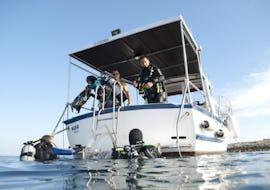 Trial Scuba Diving for Beginners - Premantura