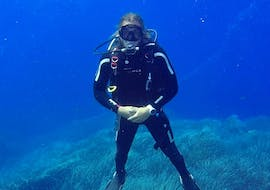 Scuba Diver Course in Ustica for Beginners