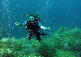 A scuba diver swimming over a reef floor.