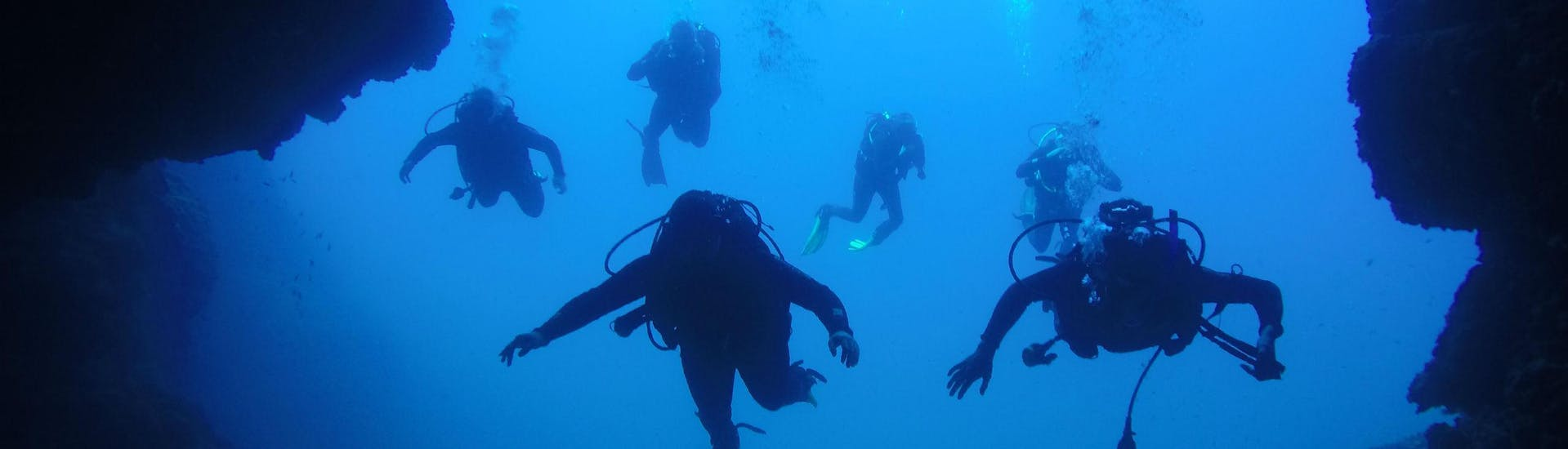 scuba-diving---guided-dives-from-dubrovnik-blue-planet-diving-center-hero