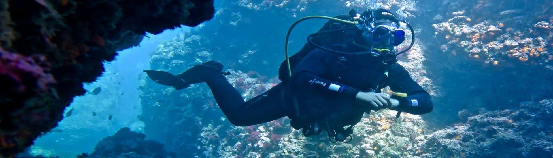 scuba-diving-course-advanced-adventure-course-leon-marina-tarifa-hero