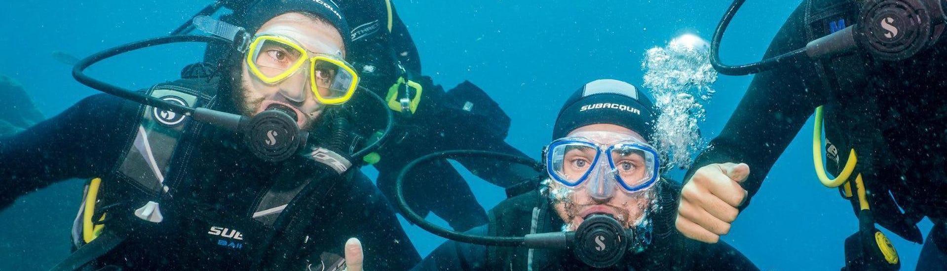 scuba-diving-course-for-beginners-padi-open-water-diver-aqua-marina-diving-tenerife-hero