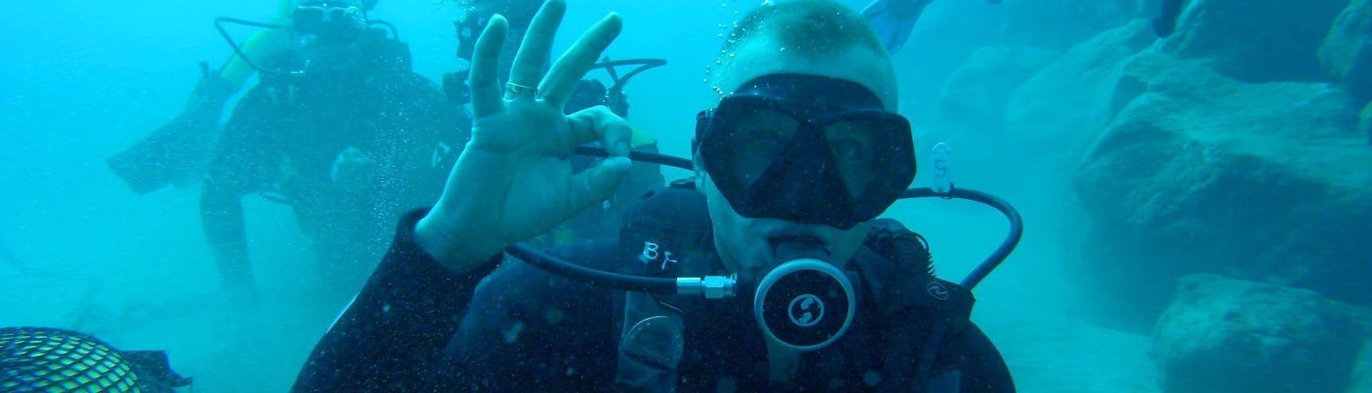 scuba-diving-course-for-beginners-padi-open-water-diver-big-fish-tenerife-hero