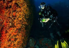 "A diver is underwater for his Scuba Diving Course ""PADI Scuba Diver"" in Hyères with European Diving School."