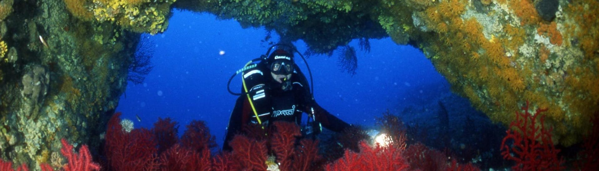 A person is posing underwater during his Scuba Diving in Îles Cerbicale for Certified Divers activity with Le Kalliste Plongée.