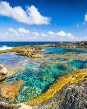 Plongée Lanzarote Shutterstock