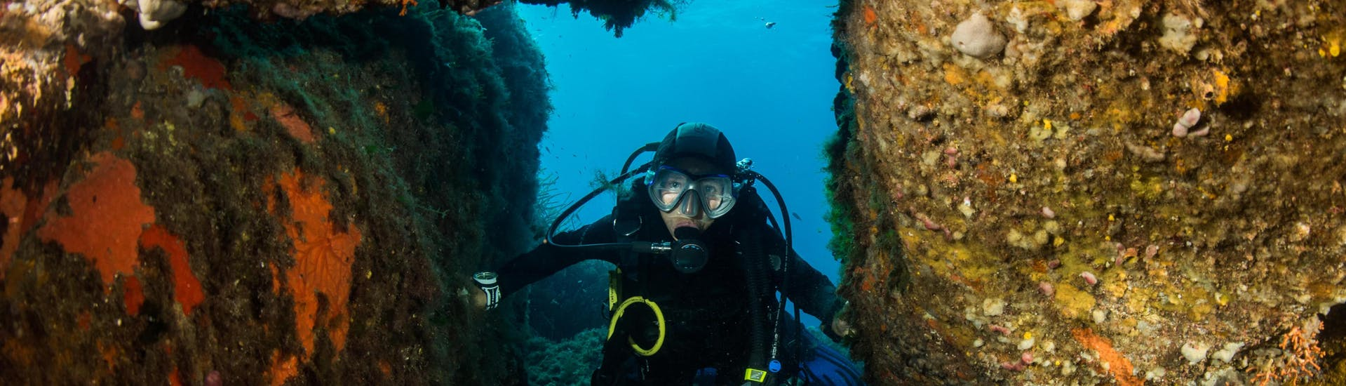 A diver is enjoying the seabed in Corse du Sud, Corsica during a diving excursion.