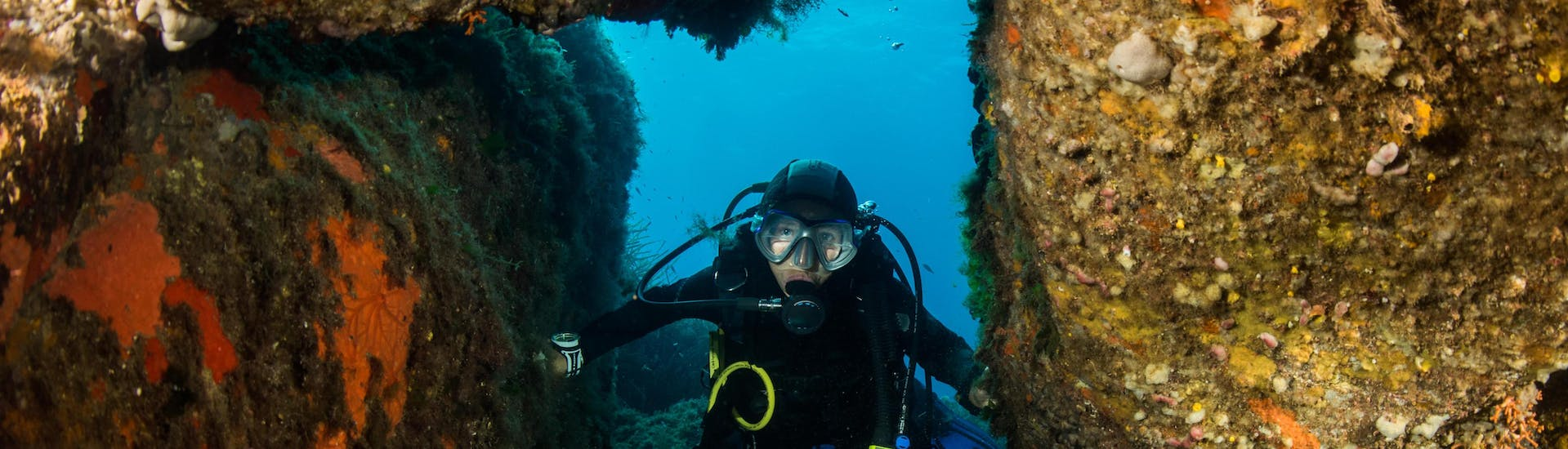 A diver is enjoying the seabed in Porto-Vecchio, Corsica during a diving excursion.