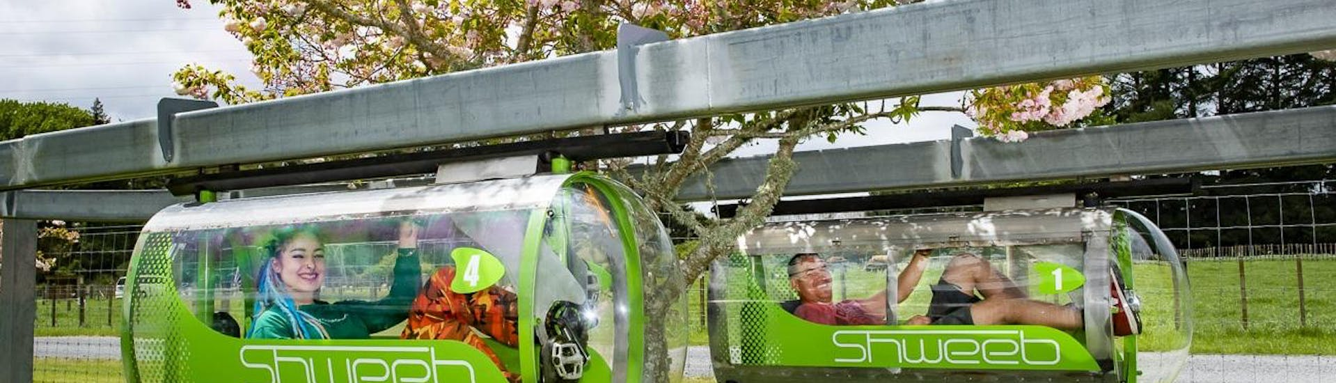 A girl is racing in an aerodynamic pod against her friend during the Shweeb Racer in Rotorua located in Velocity Valley Rotorua Adventure Park.