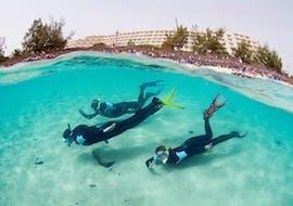 Snorkelen in Costa Teguise met Native Diving Lanzarote