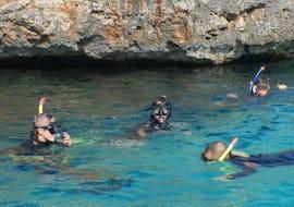 Snorkeling - Alcudia