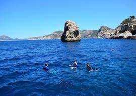 Snorkeling - Port d'Andratx