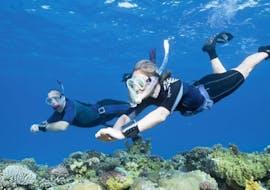 Snorkeling in Tarifa
