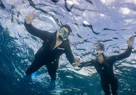 Snorkeling Excursion in Tenerife