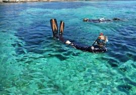 Snorkeling in Porto Pollo - Maddalena Archipelago Tour