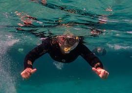 Schnorcheln an der Costa Blanca mit Dive Academy Santa Pola