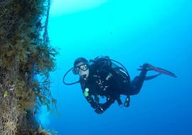 A diver is taking part in the SSI Diver Stress & Rescue Specialty in Malta provided by Endless Oceans Dive Centre Gozo.