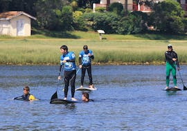 A group is paddling in the Bassin d'Arcachon thanks the stand-up paddle board rental with Pyla surf school.
