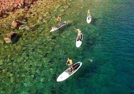 Stand-Up Paddle and Snorkel Adventure - Santorini