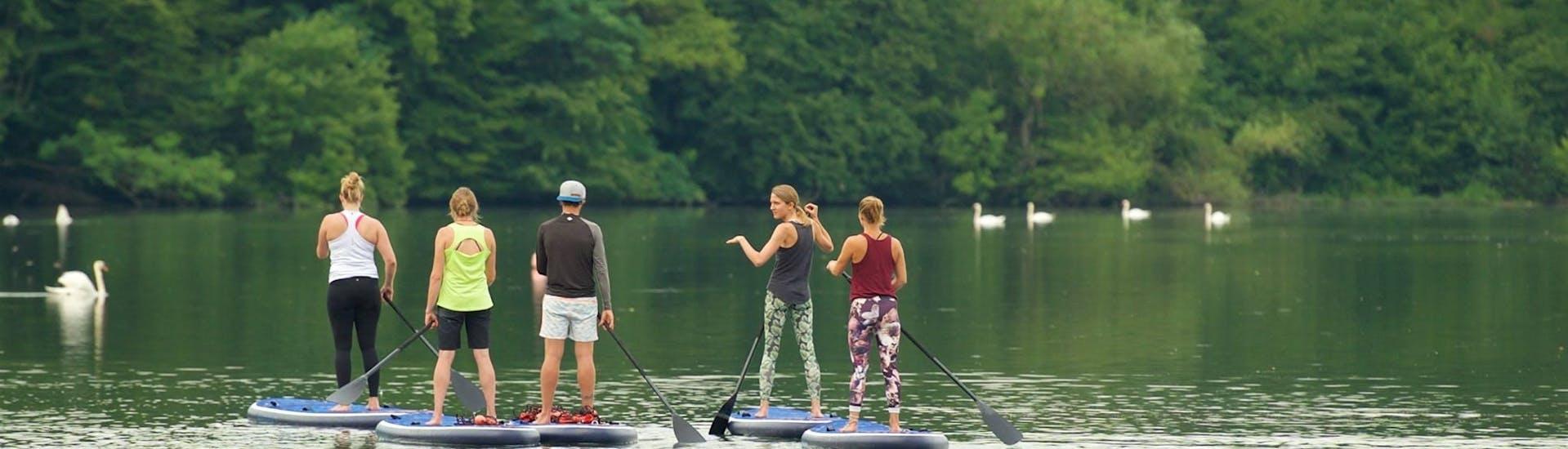 "SUP Tour ""Action"" - Rhine"