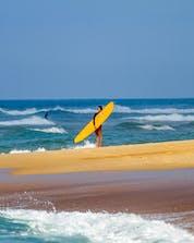 Surfing Hossegor (c) Shutterstock