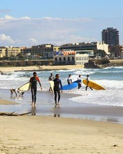 Surfing Matosinhos (c) Shutterstock