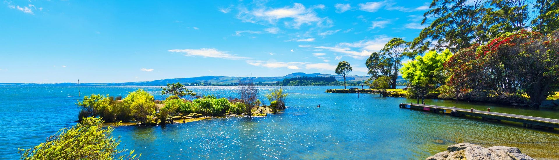 An image of one of the Rotorua Lakes near Okere Falls, a popular place to go Stand Up Paddleboarding.