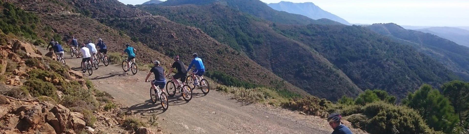 Downhill MTB Tour in Sierra de las Nieves - Marbella